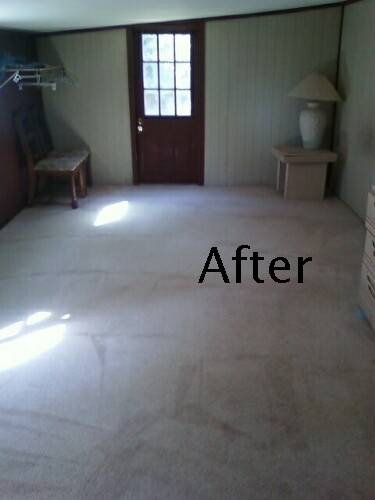 CARPET DEMO 1 AFTER