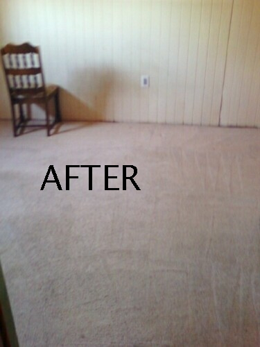 We clean Carpets on Eglin AFB for Military Move Outs